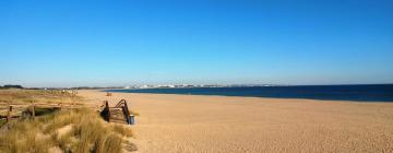 Hotels in Meia Praia
