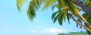 Hotels in Klong Prao Beach
