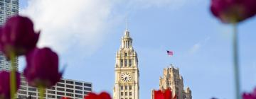 Hotels in Magnificent Mile