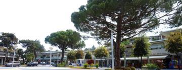 Hotels in Pineta