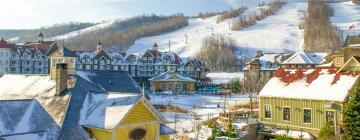 Hotels in Blue Mountain Village