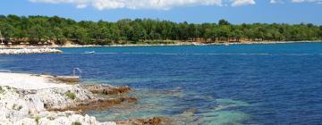 Hotels in Zelena Laguna