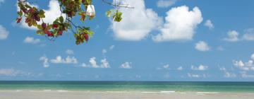 Hotels in White Sand Beach