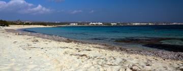 Отели в районе Пляж Нисси