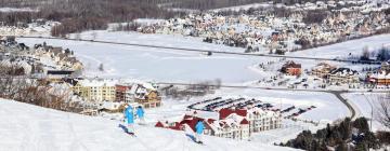 Hotels in Blue Mountain Ski Area