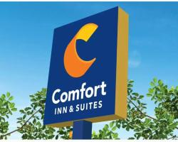 Comfort Inn & Suites Dallas Medical Market Center