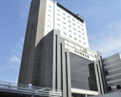 Hyunjin Tourist Hotel
