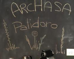 ArcHasa Palidoro