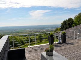 Hotel Zum Rebhang, hotel near Eberbach Abbey, Oestrich-Winkel