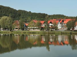 Flair Hotel Werbetal, hotel in Waldeck