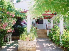 Apartments Lovor, budget hotel in Silba