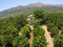Farm House in Bio Οrange Plantation, farm stay in Moírai