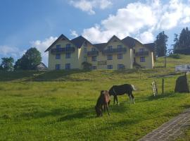 Połonina, hotel in Korbielów