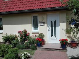 Ferienwohnung Kleine Moewe, Hotel in der Nähe von: Albrecht-Kossel-Institute for Neuroregeneration-AKos, Rostock