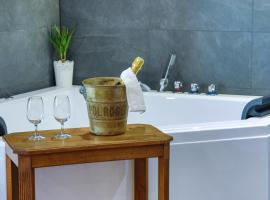 Suites Residences Spa, hotel in Colmar