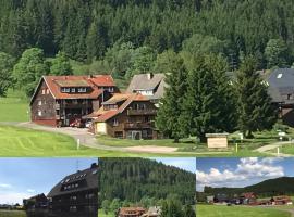 Hotel Sonnenmatte nahe Badeparadies Schwarzwald, hotel in Titisee-Neustadt