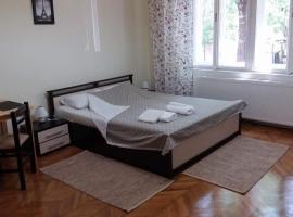 City Center Apartment, hotel din Timișoara