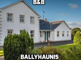 Mulberry Lodge Guest House, B&B in Ballyhaunis