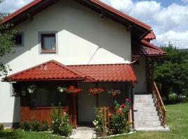 House Sara, apartment in Korenica