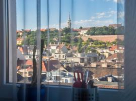 Panorama view of the Castle, hotel near Buda Castle, Budapest