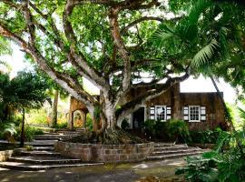 Montpelier Plantation & Beach, hotel in Nevis