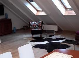 Apartament Loft DeLuxe Koszalin, apartment in Koszalin