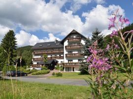 Hotel Thüringer Wald, Hotel in der Nähe von: Ottilienbad, Ilmenau