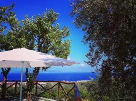 Villa Beatrice, pet-friendly hotel in Sorrento