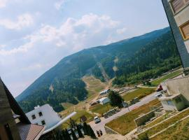 Apartment Ammar, hotel in Bjelašnica