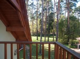 Vacation home in Sosnovy bor, hotel with jacuzzis in Pushkino