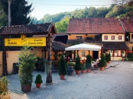 Guest House pri Vodniku, zasebna nastanitev v mestu Ljubljana