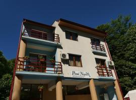 Pensiunea Pinul Negru, guest house in Băile Herculane