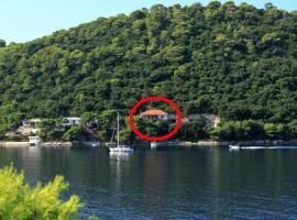 Apartments and rooms by the sea Ubli, Lastovo - 991, hotel in Ubli