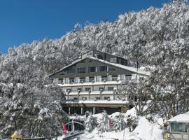 Falls Creek Hotel, hotel in Falls Creek