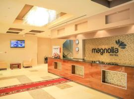 Magnolia Hotel & Conference Center, hotel in Addis Ababa