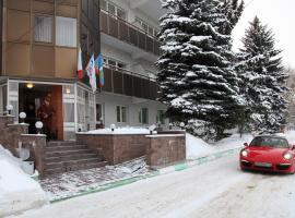 Hotel Zenit, hotel in Krasnogorsk