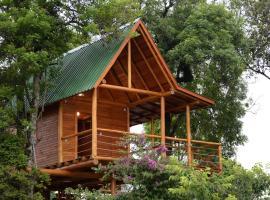 Casa na Árvore, holiday home in Santa Cruz do Sul