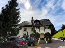 Chalet-Hotel Larix, hotel in Davos