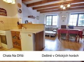 Chata Na Dříši, hotel in Deštné v Orlických horách