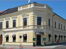 Hotel Tacl, hotel in Holešov