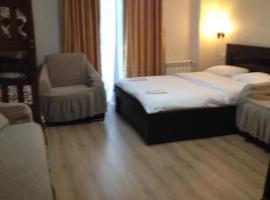 David APT on Bakuriani Orbi Palace, hotel in Bakuriani