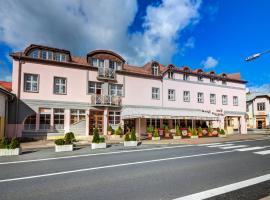 Hotel Pizzeria Istria, hotel ve Velkých Losinách