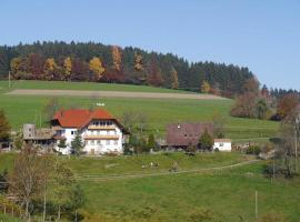 Dischhof, farm stay in Biederbach Baden-Württemberg