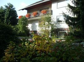 Pension Rosenschlößchen, hotel near Mühlenkopfschanze, Willingen