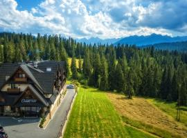 Pensjonat Orlik Mountain Resort&SPA, hotel near Bukovina Therms, Bukowina Tatrzańska
