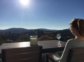 Lina's Ferienwohnungen, Ferienwohnung in Sankt Andreasberg