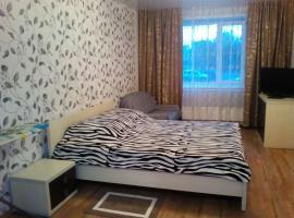 Kvartira Severny 18, apartment in Berdsk