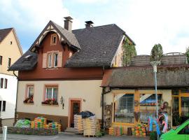 Ferienwohnung Schwarzwaldglück, דירה בטיטיזי-נוישטאדט