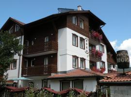 Family Hotel Shoky, отель в городе Чепеларе