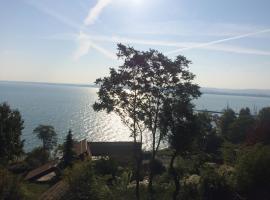 TIHANY (BALATON), BEST VIEW, SPACIOUS WELLNESS, CENTRAL , 50m BEACH, hotel near Tihany Marina, Tihany